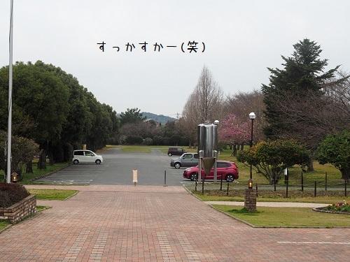 P3250016.jpg