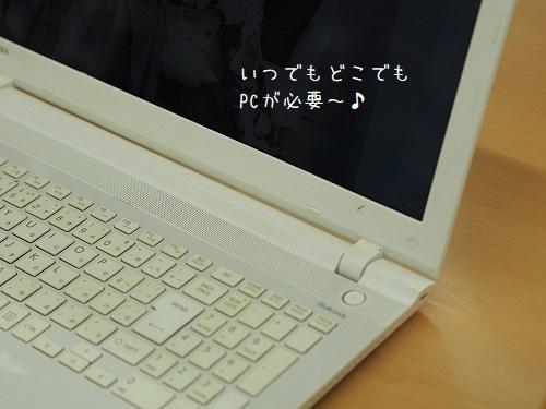 P7130028.jpg