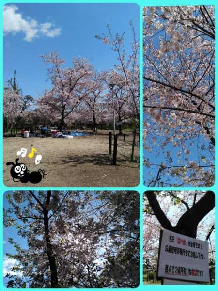 19-04-09-16-52-22-925_deco_20190409165656.jpg