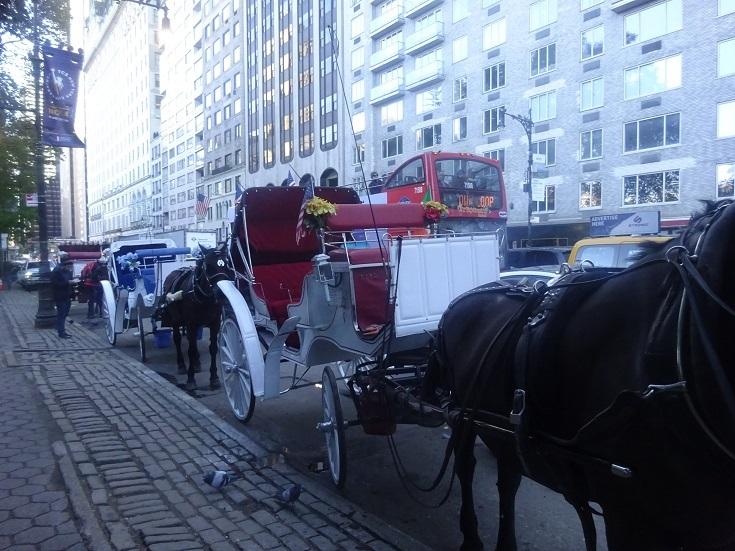 11NYC.jpg