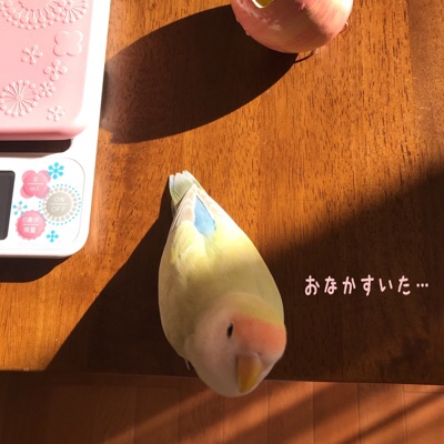 fc2blog_20181117222502534.jpg