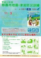okinawa301103-6