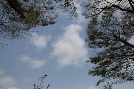 20190407雲-00000242