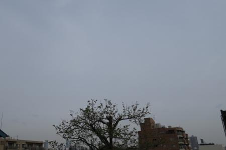 20190417雲-00000284