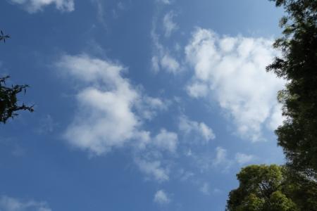 20190418雲-00000288