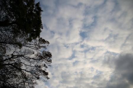 20190420雲-00000300