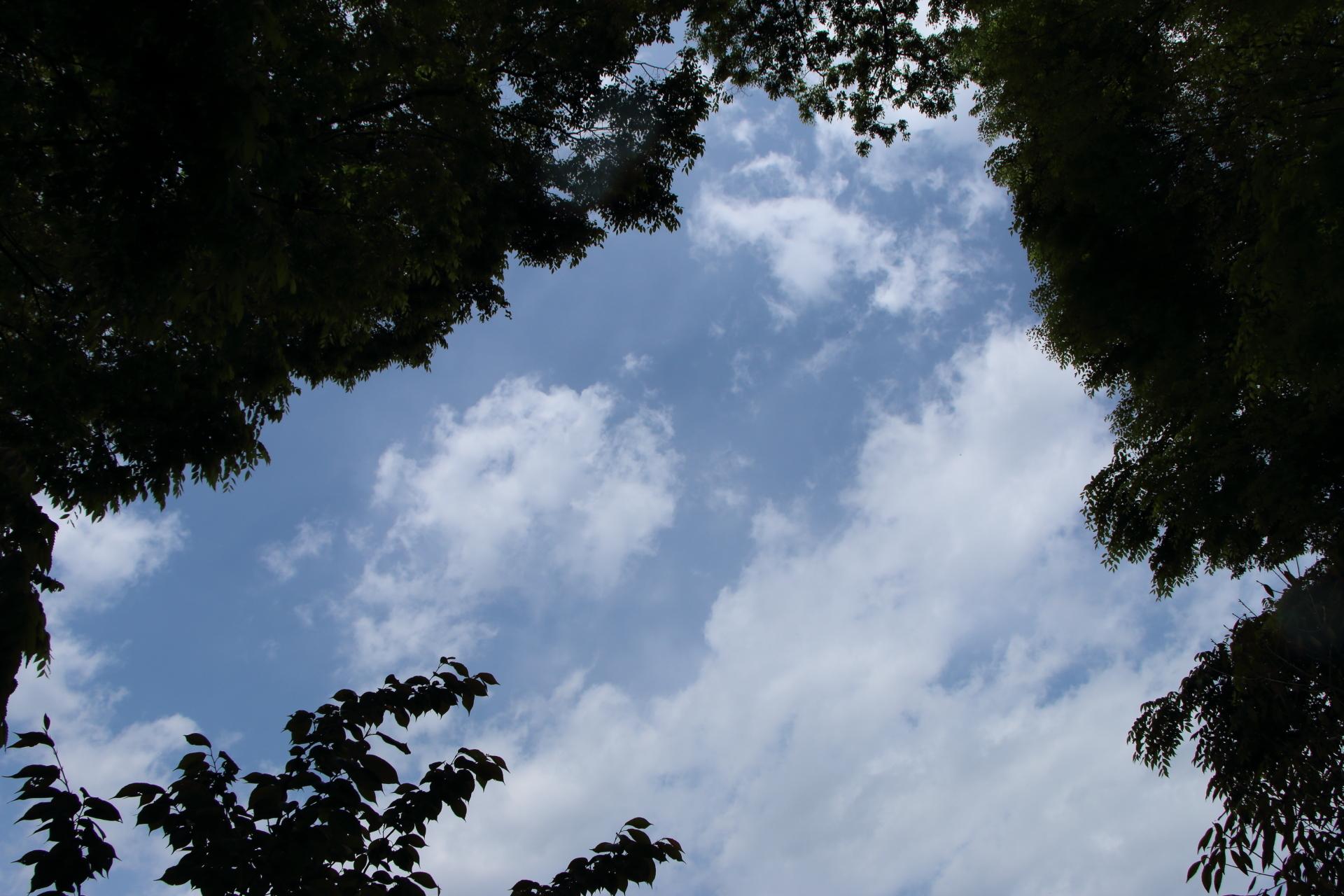 20190502雲00000362