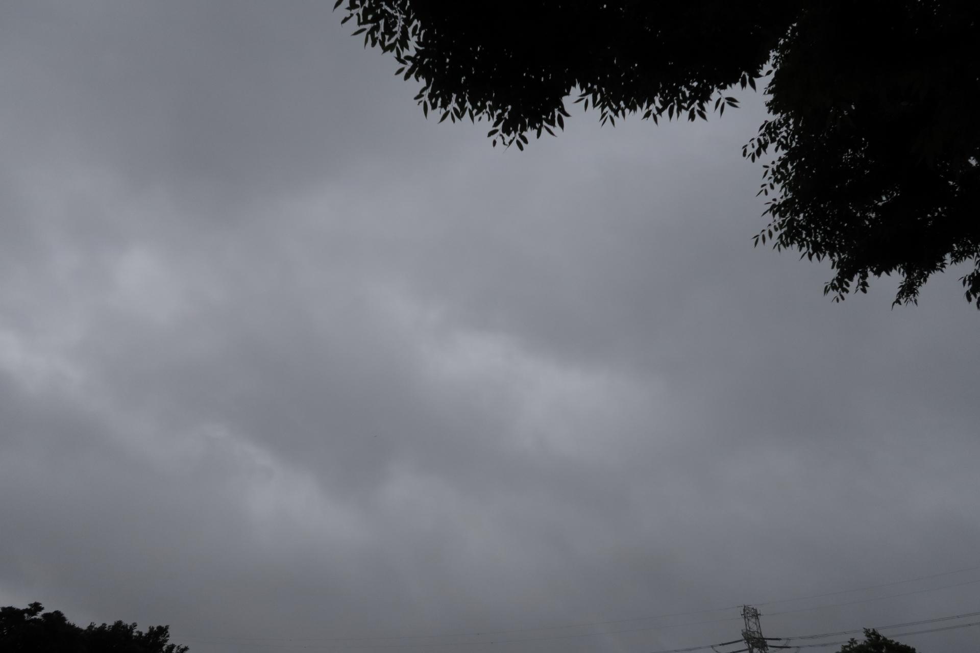 20190521雲00000493