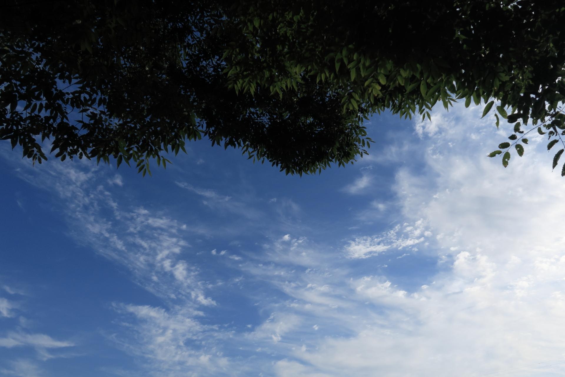 20190523雲00000502