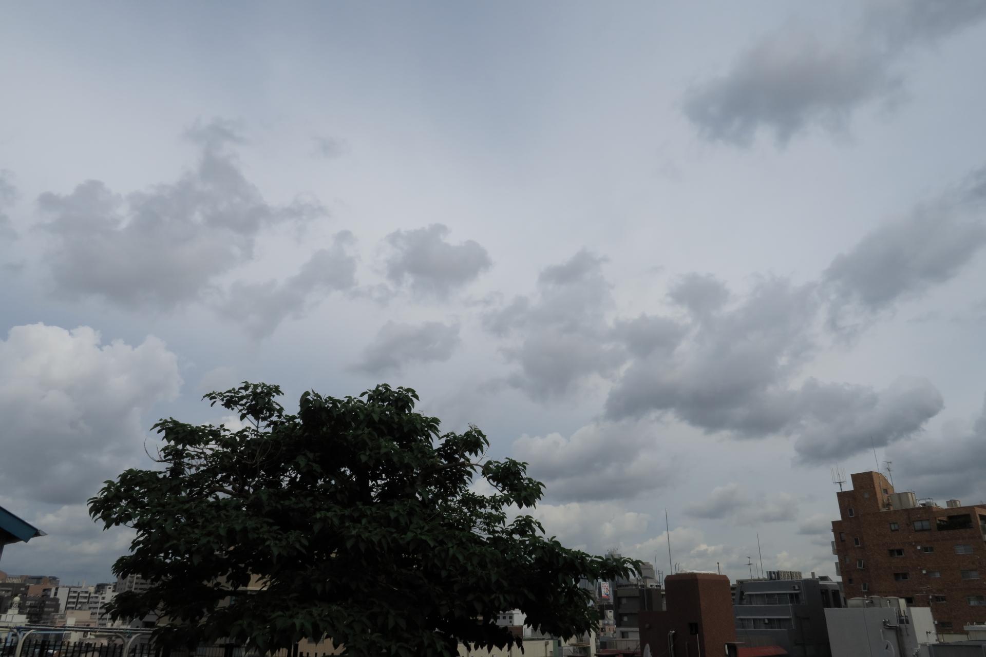 20190531雲00000534