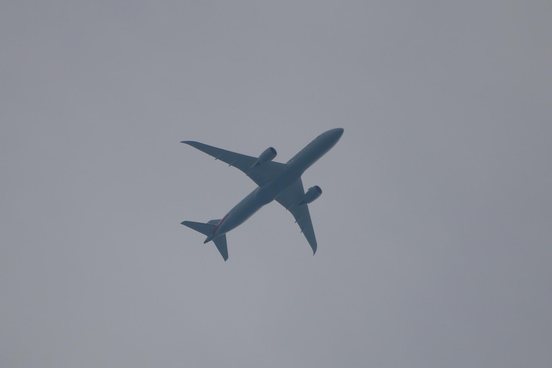20190601飛行機00000547