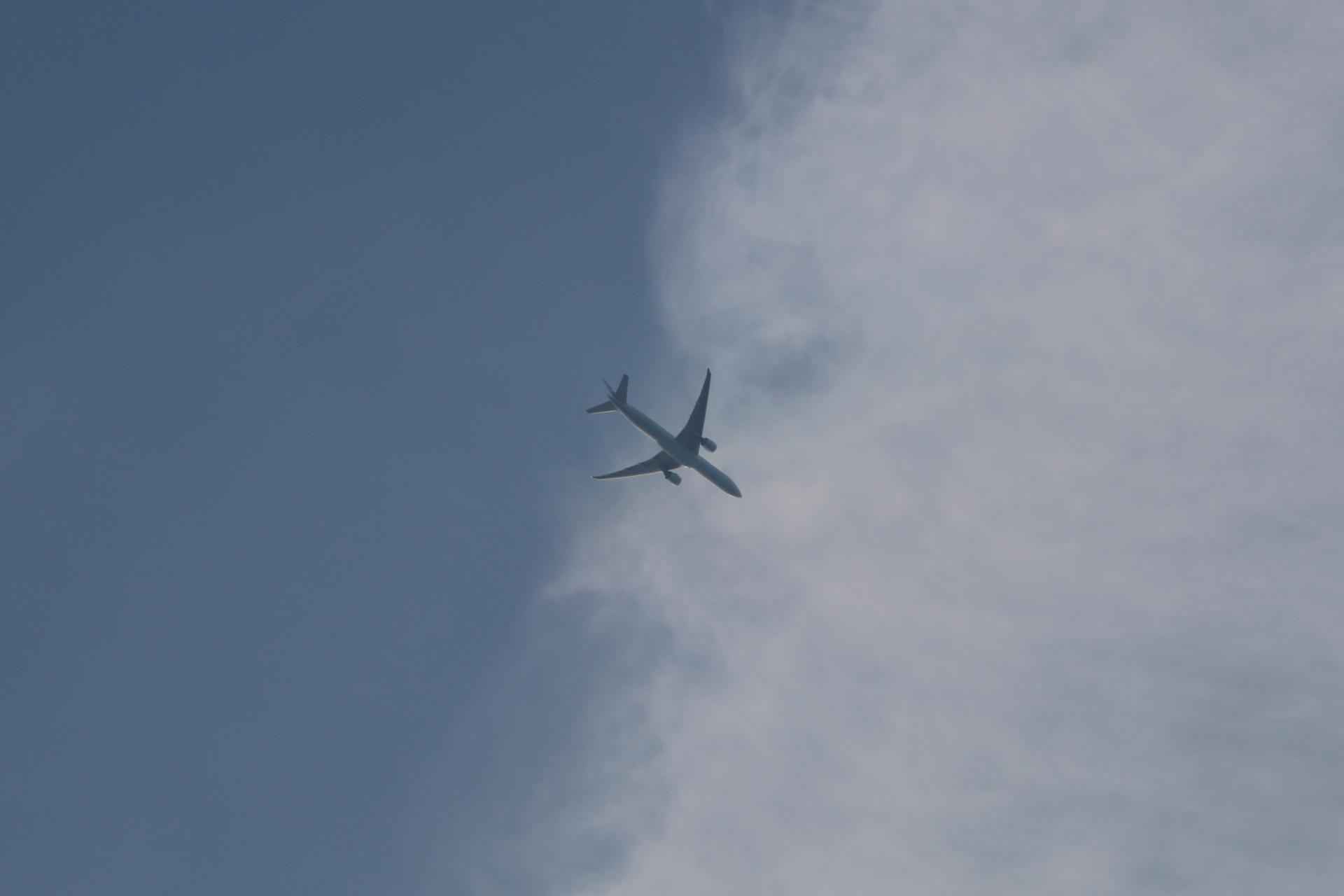20190601飛行機00000549