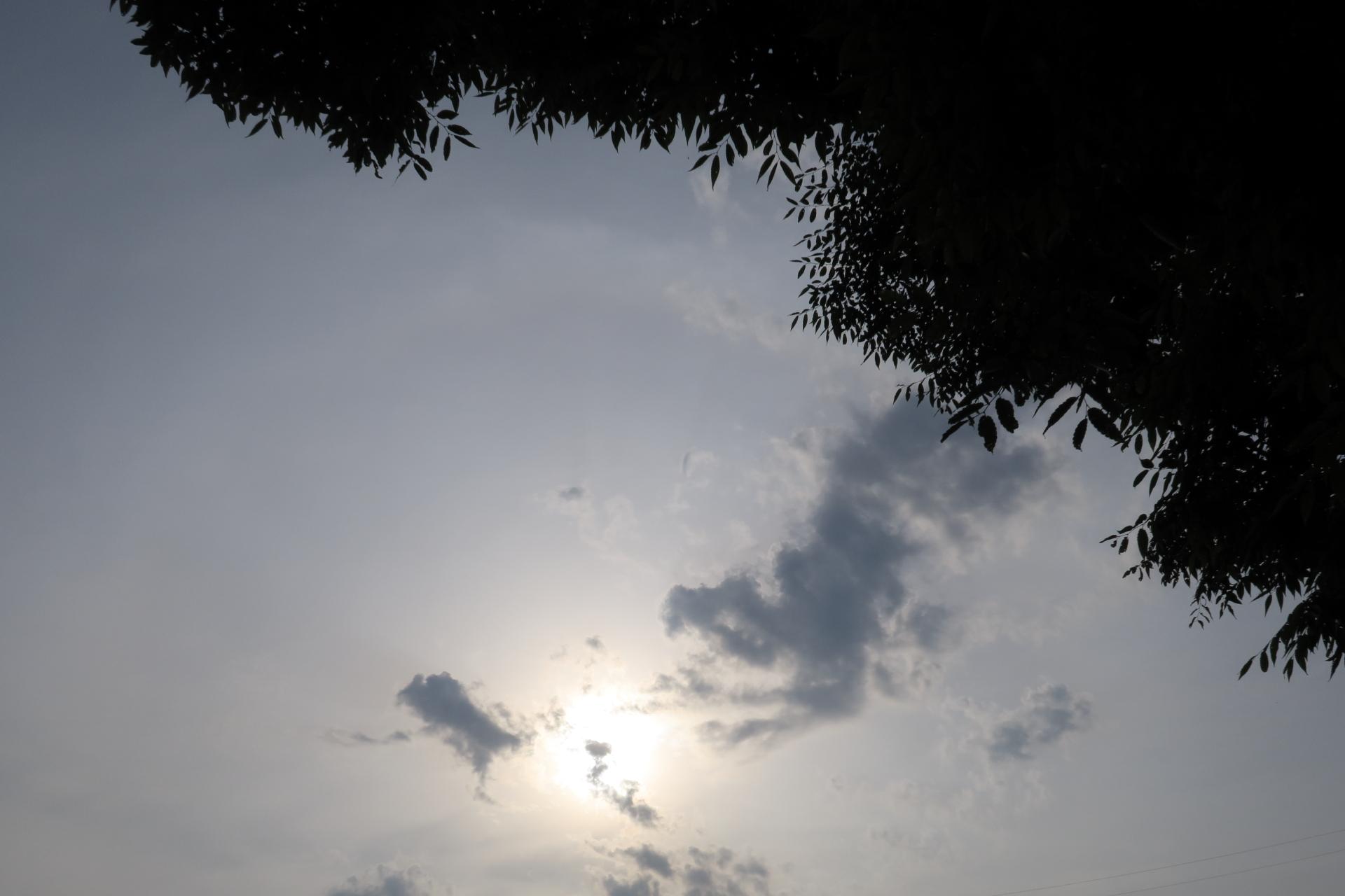 20190606雲00000565
