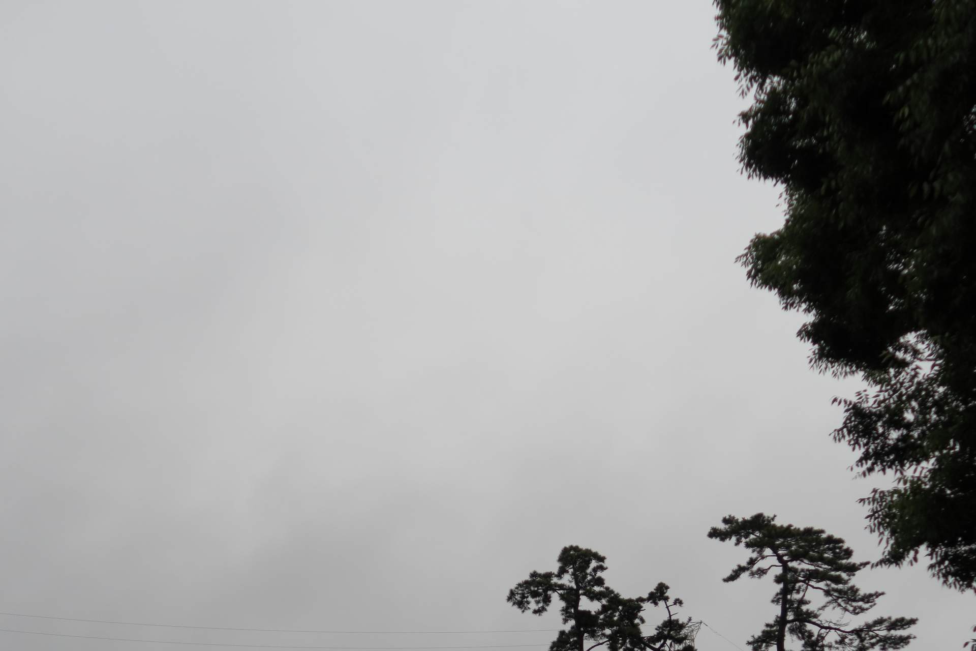20190610雲00000607