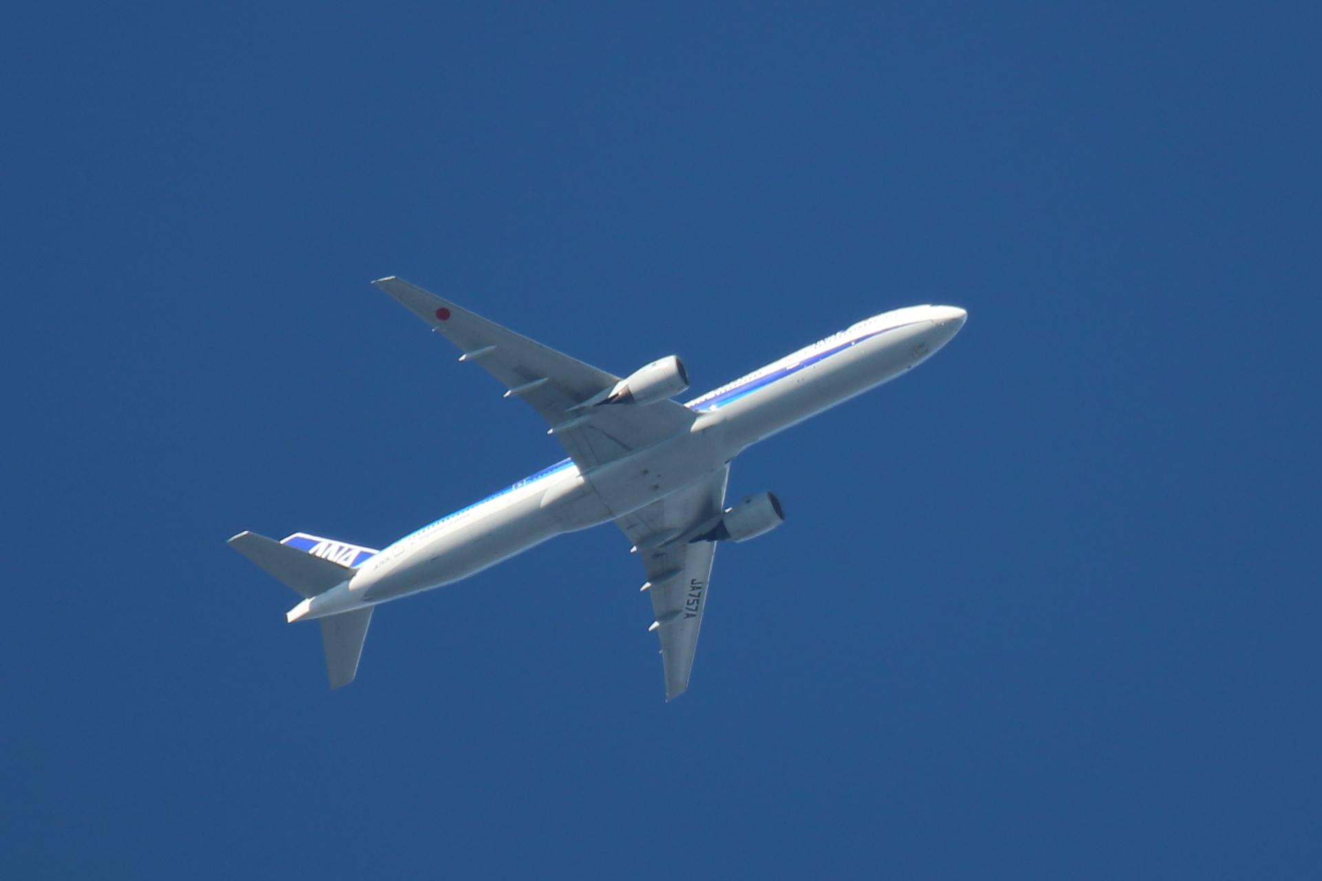 20190616飛行機00000637