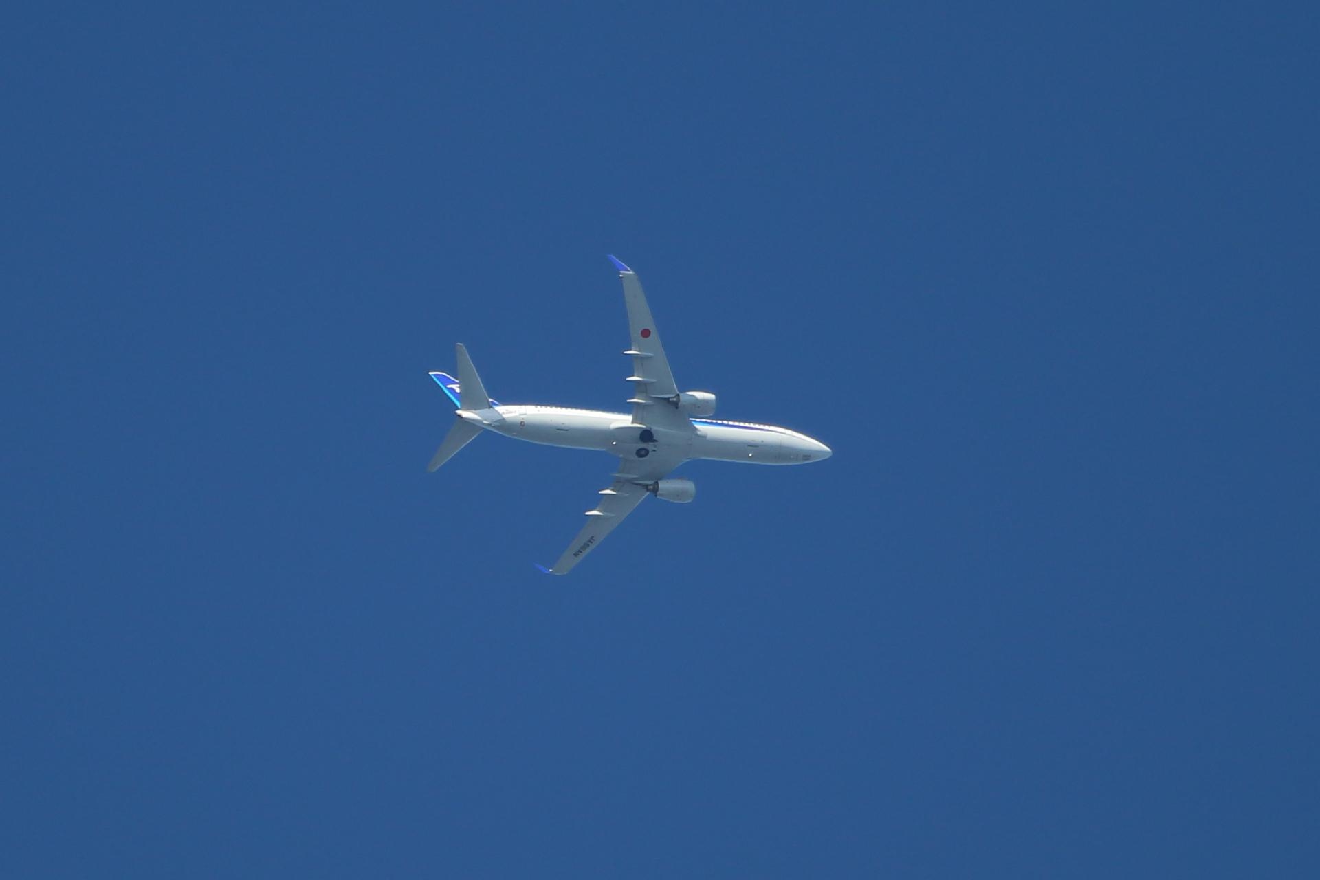 20190616飛行機00000635