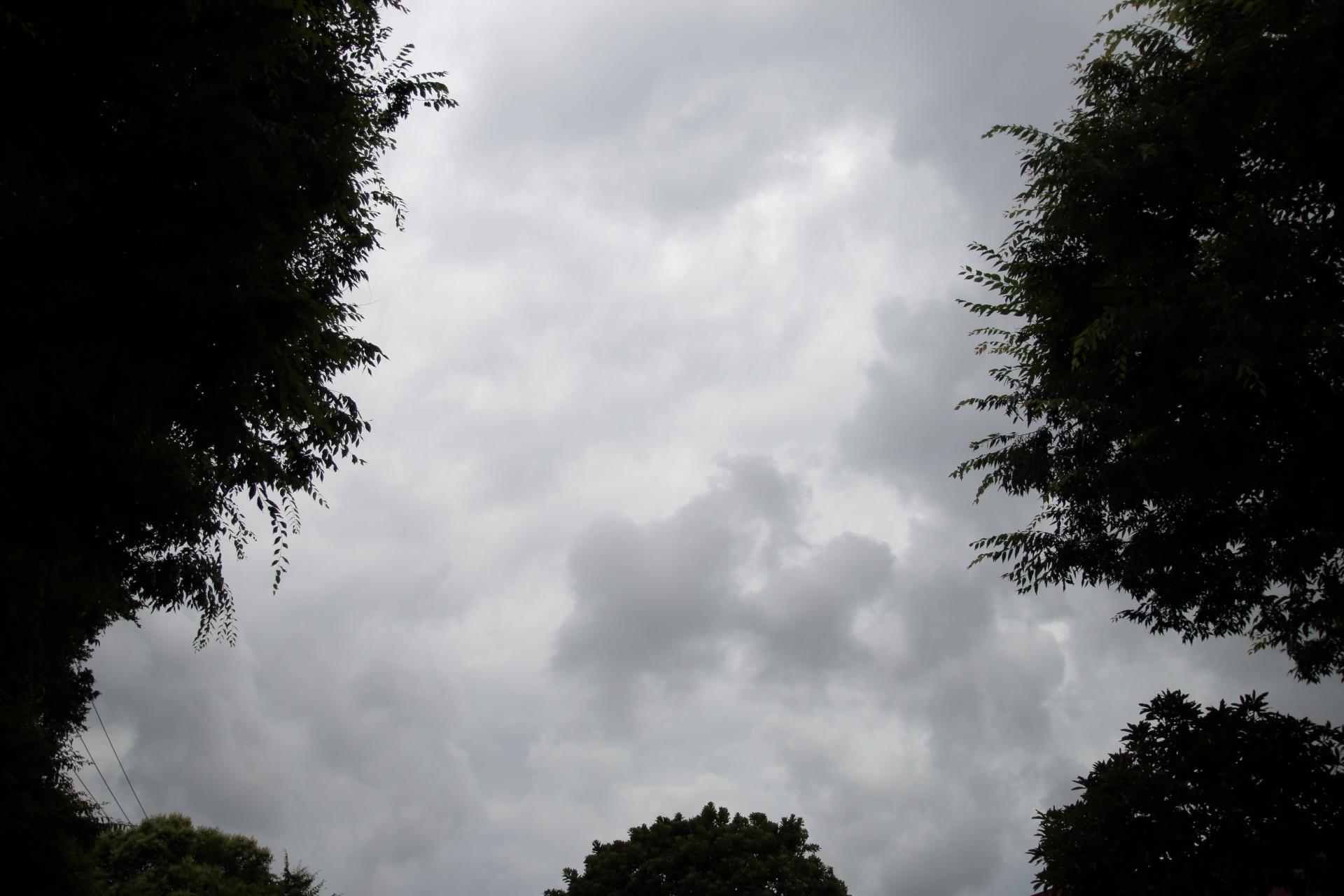 20190622雲00000685