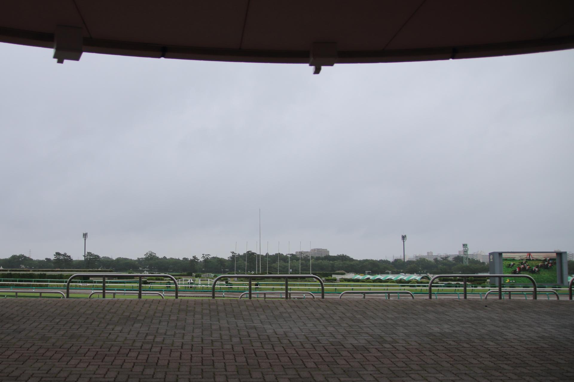 雨の日の競馬場