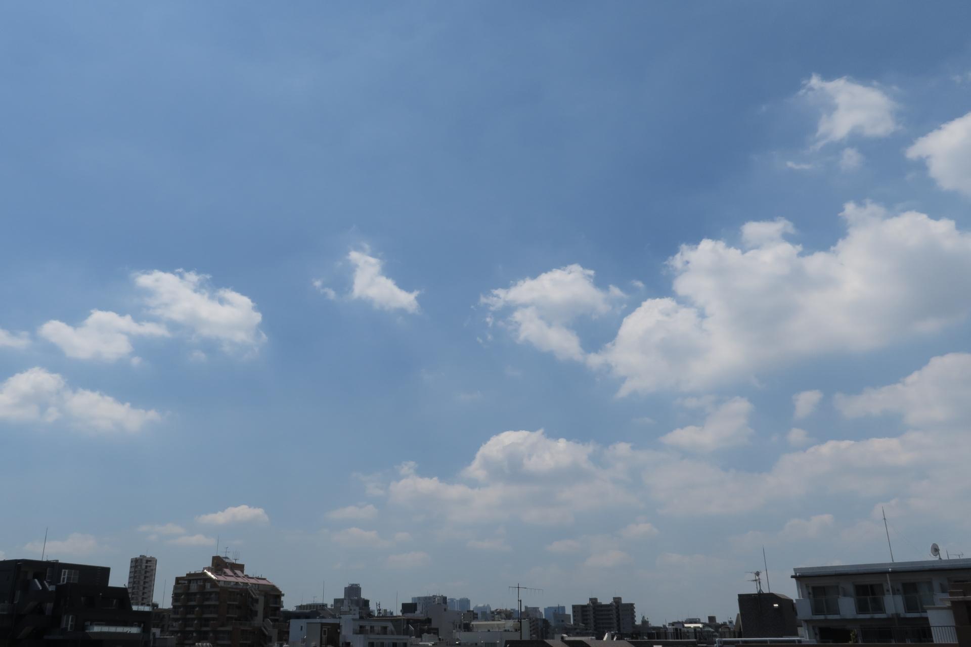 今日の雲 昼