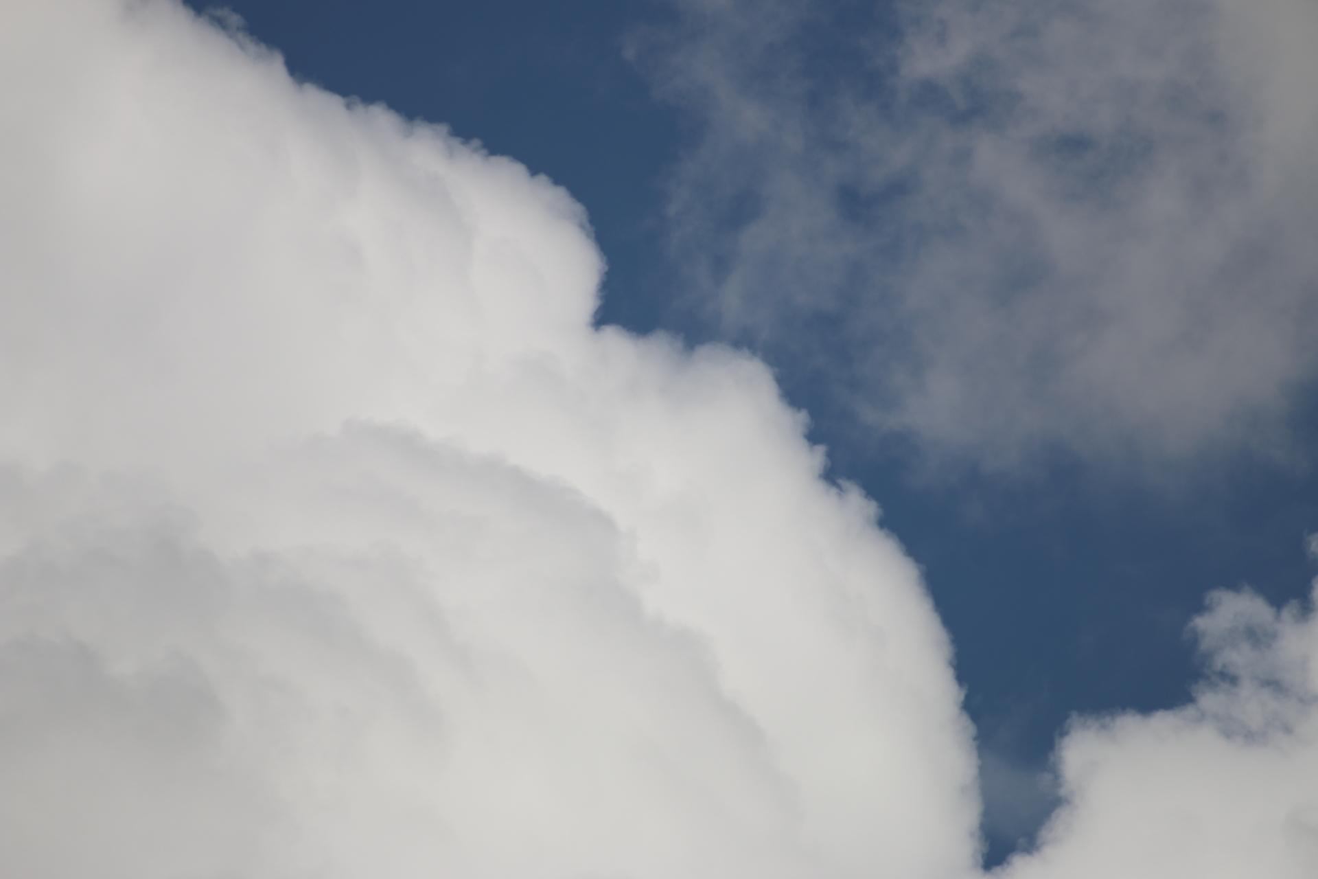 今日の雲 ゴリラ