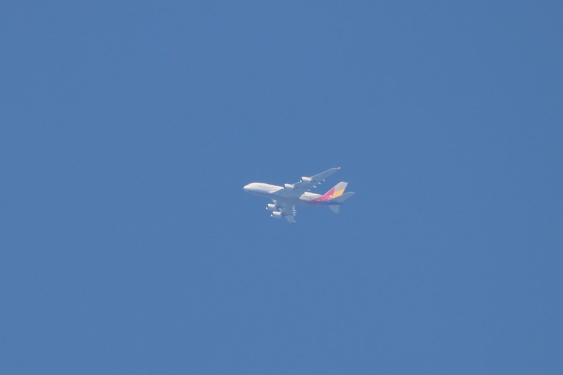 アシアナ航空 A380