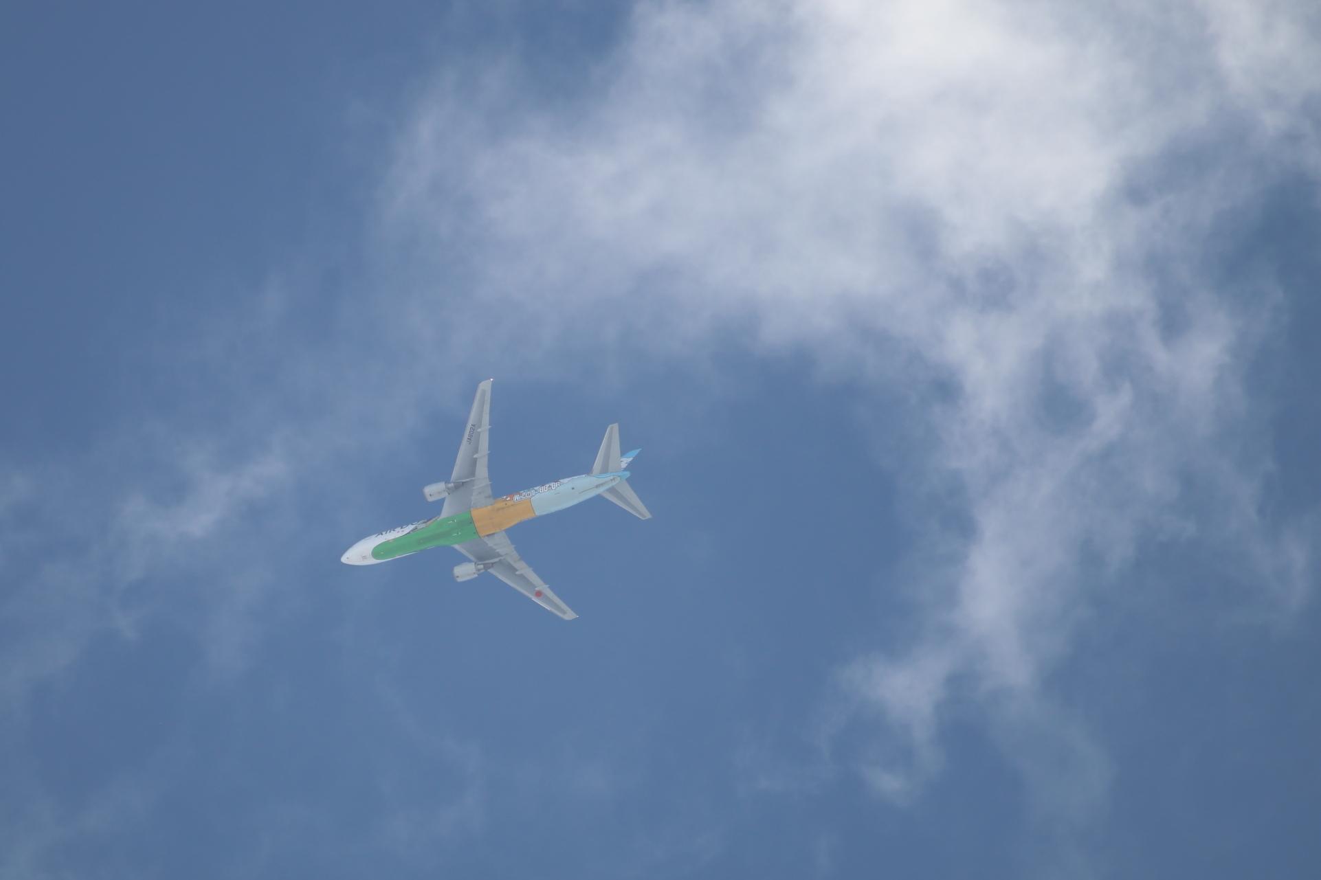 飛行機と雲