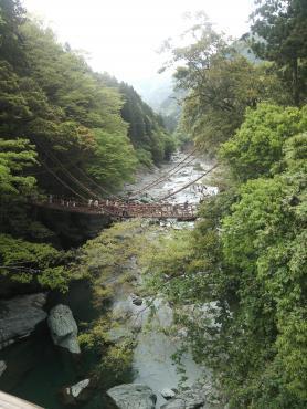 祖谷の蔓橋