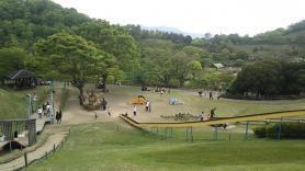神山森林公園 イルローザの森 マンマローザ広場