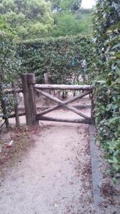 神山森林公園 イルローザの森 生垣迷路 行き止まり