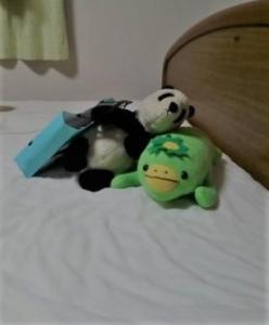 シモンズベッドとパンダとカッパ