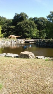 カブトガニ博物館 恐竜公園3