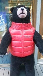 モンベルのクマ