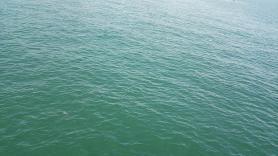 航海に出る海面