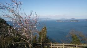 女木島 展望台からの眺め