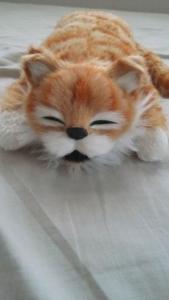 笑う!猫田課長 正面