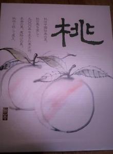 岡山の桃 お中元