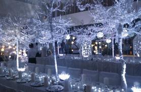 純白の森 ナイトミュージアム4