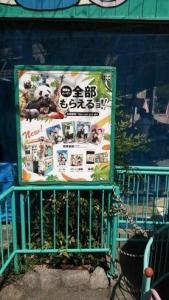 王子動物園限定プリクラ