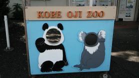 王子動物園 顔出しパネル パンダとコアラ