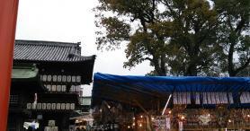 2019 椿祭り