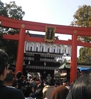 tsubaki1.jpg