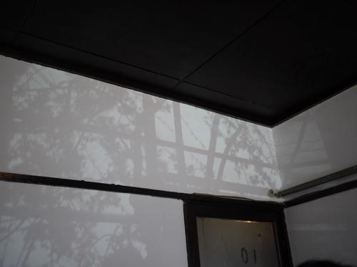 P1160265.jpg