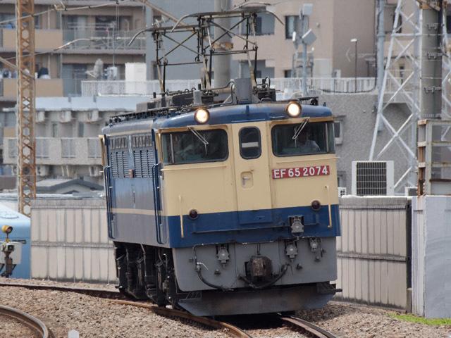 EF652074_nawate_190618.jpg