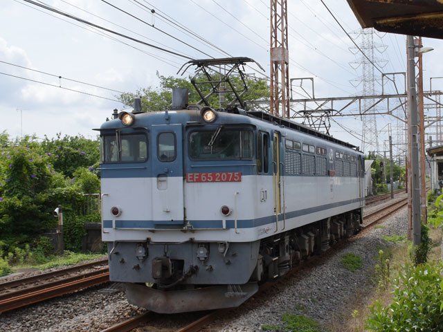 EF652075_shinmachi_190618.jpg