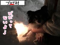 2017年2月11日かまくら21
