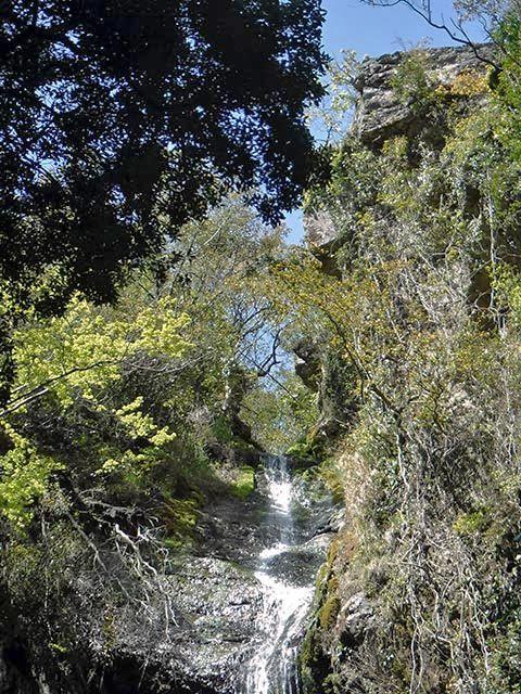 次の滝11