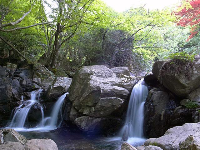 尼ン滝02