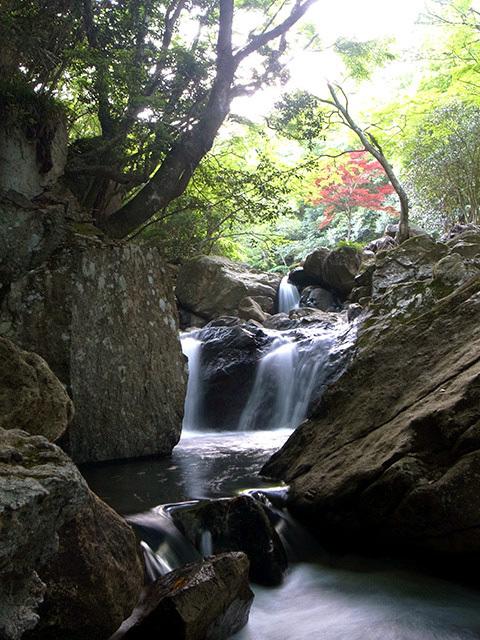 尼ン滝05