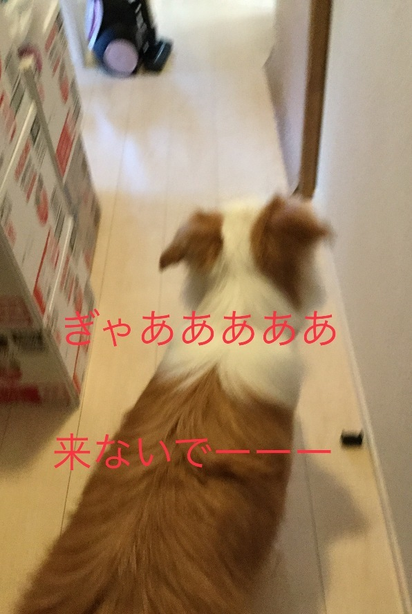IMG_E1679.jpg