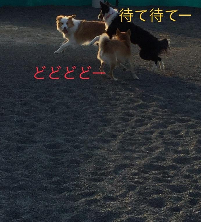 IMG_E5492.jpg